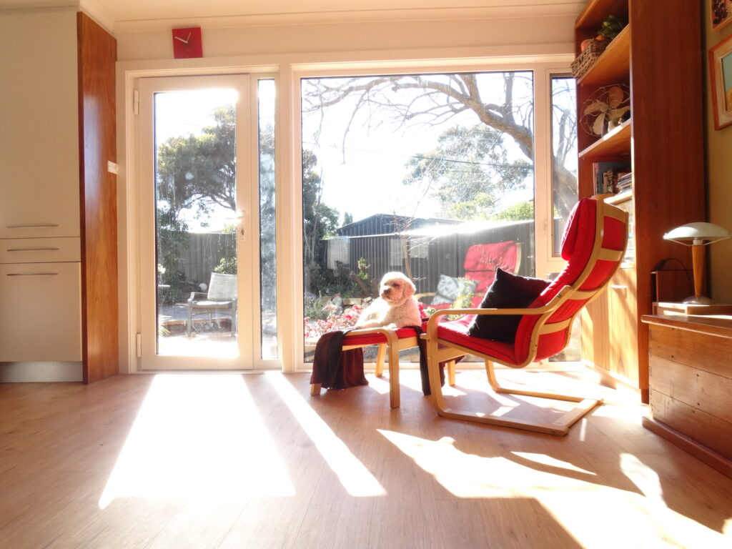 Photo of a sunny living room
